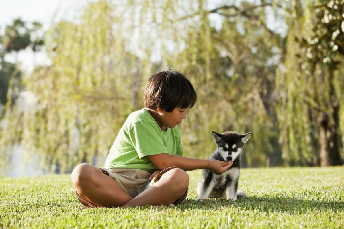 3 Ways Owning a Dog Can Benefit Your Life